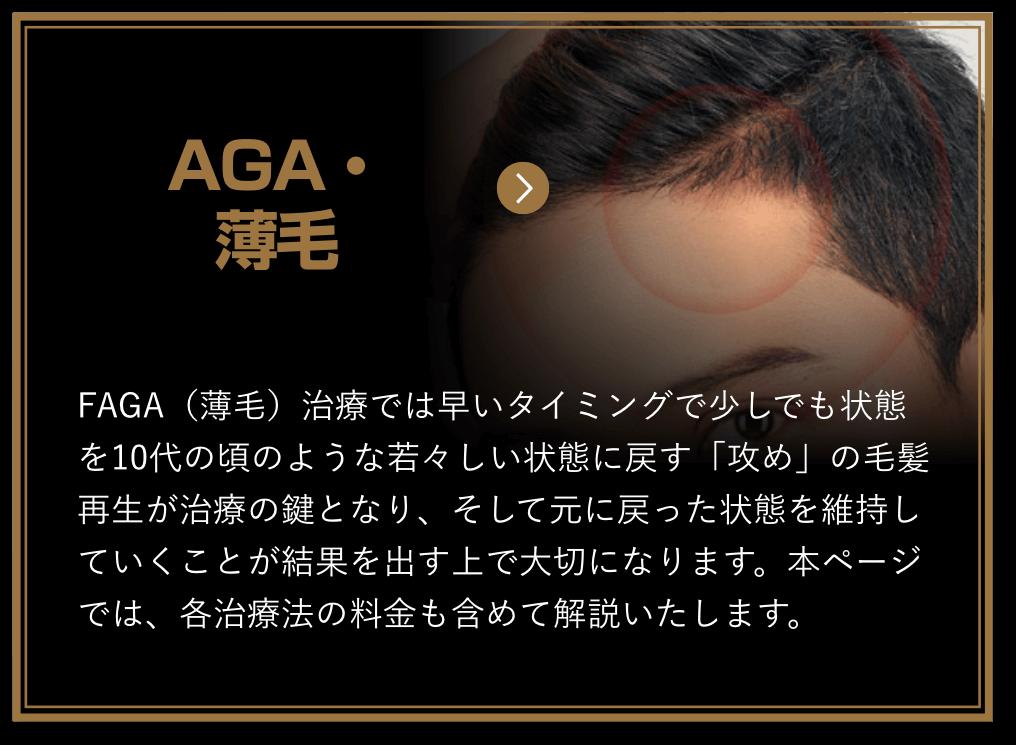 FAGA_薄毛