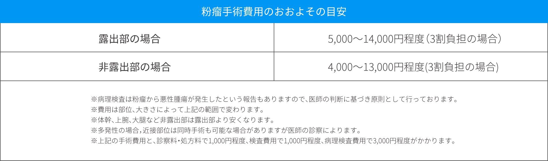 粉瘤治療の料金